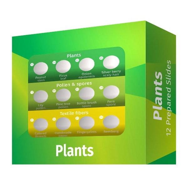 Набор микропрепаратов Levenhuk LabZZ P12, растения представитель Levenhuk в России